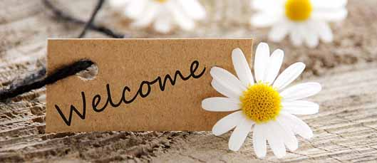 Daisy Welcome Image